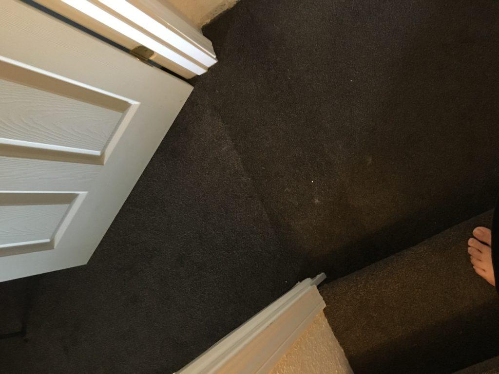 Carpet seams visible