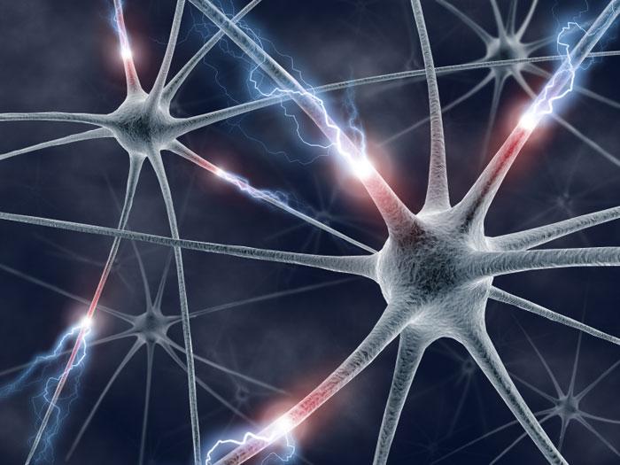 Flashforward Friday: Neurology and Neurons