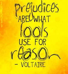 prejudices are what fools use for reason. -voltaire